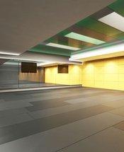 Salle de sport Krystal Grand Suites Insurgentes Ciudad de México